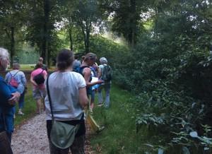 Wildplukwandeling in het Groene Hart met Tuincursus online by Geral Overbeek klein